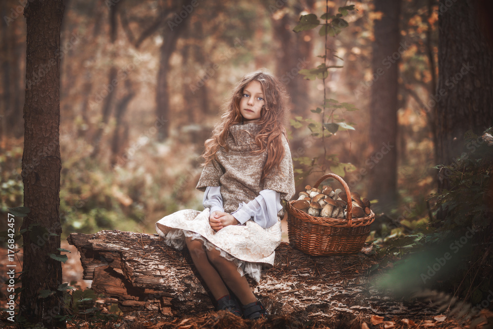 Fototapety, obrazy: A beautiful little girl is sitting on an old log in a dense forest. The child sits on an old deck, next to it there is a full basket of mushrooms. Tinting photos.