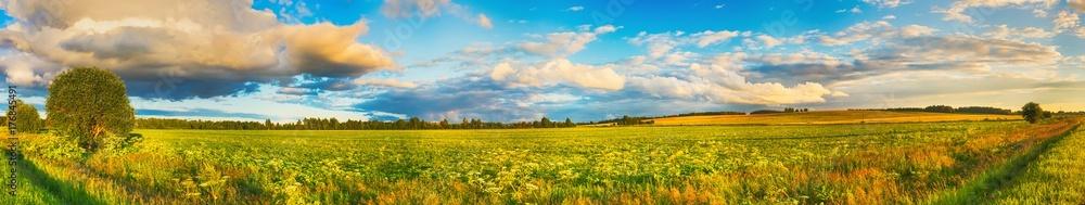 Fototapety, obrazy: Rural landscape. Panorama