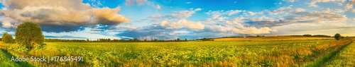 Cadres-photo bureau Miel Rural landscape. Panorama