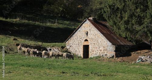 bergerie en Auvergne