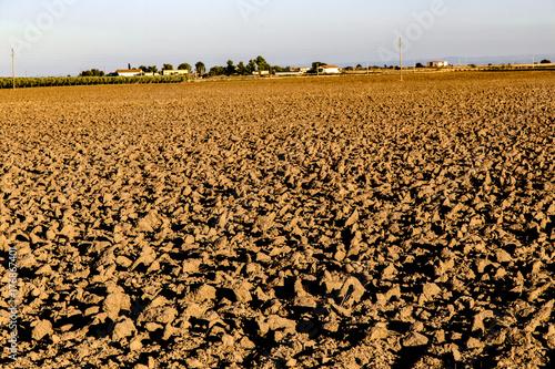 Fotografie, Obraz  La terra del Tavoliere di Puglia