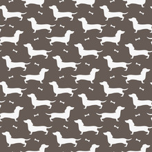 Silhouette Of The Dachshund On The Gray Background.