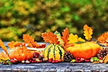Autumn Pumpkins On Picnic Table