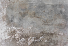 Rustic Scrtached Concrete Wall...