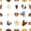 Doberman, Dalmatian, Dachshund, Spitz, Stafford and other breeds of dogs.Muzzle of the breed of dogs set collection icons in cartoon style vector symbol stock illustration web.