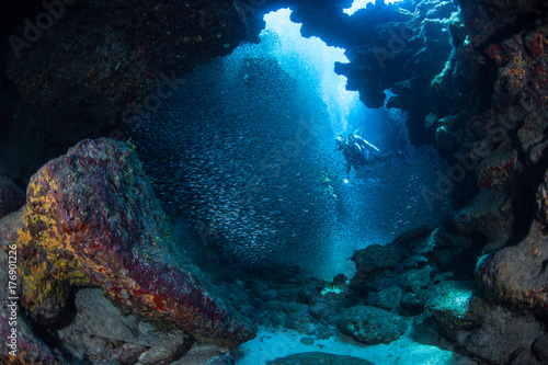 Tuinposter Koraalriffen Diver and School of Fish in Dark, Underwater Cave