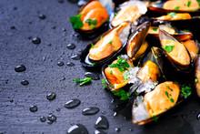 Mussels, Molluscs, Seaweed, Se...