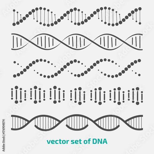 Obraz vector set of elements DNA. - fototapety do salonu