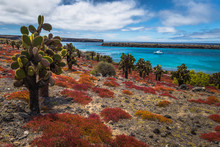 Galapagos Islands - August 24,...