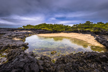 Galapagos Islands - August 26,...