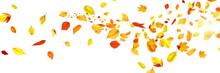 Goldener Herbst Auf Weissem Hi...