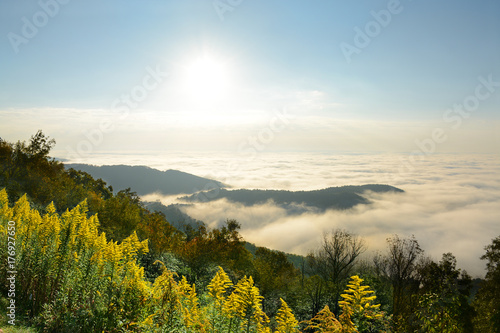 Beautiful mountain landscape with clouds over the beautiful mountains and hills at sunrise. Wildflowers on the hill. Close to Blowing Rock, Blue Ridge Parkway, North Carolina, USA.