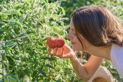 Woman smelling cultivated tomatoes in hands