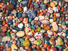 Multicolored Sea Pebbles On The Seashore - Abstract Background For Your Design Of Summer Holidays Or Sea Leisure. Wet Pebble-stone Closeup On The Beach Of Different Bright Colors.