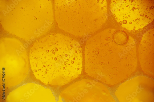 Photo close-up of honeycomb