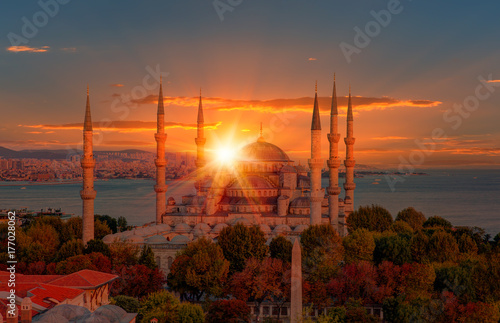 Foto op Canvas Baksteen The Blue Mosque, (Sultanahmet), Istanbul, Turkey.