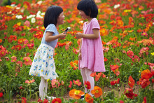 Two Little Girls In The Spring...