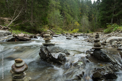 Foto op Aluminium Rivier mountain river with stones, forest and rocks background