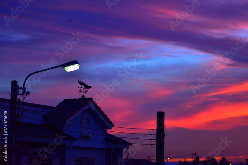Tuinposter Violet weather vane at sunrise with bright colors in clouds.