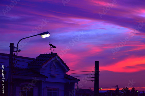 Spoed Foto op Canvas Violet weather vane at sunrise with bright colors in clouds.