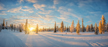 Snowy Landscape At Sunset, Fro...