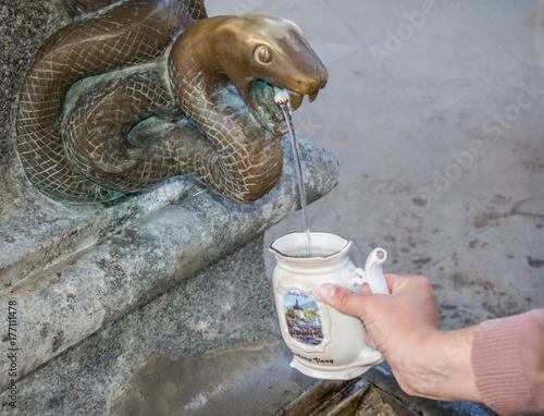 Fotografie, Obraz  Schlangenkopf Heilquelle in Karlovy Vary,
