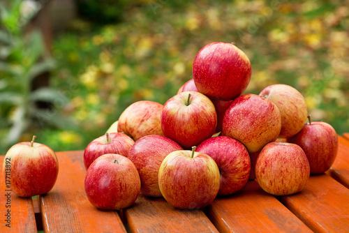 Plakat Czerwoni jabłka na stole w ogródzie