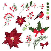 Set Of Decorative Elements For Christmas Holiday Cards With Flowers And Berries. Vector Illustration, Isolated On White Background.