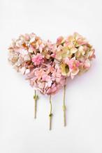 Flower Heart On White Background