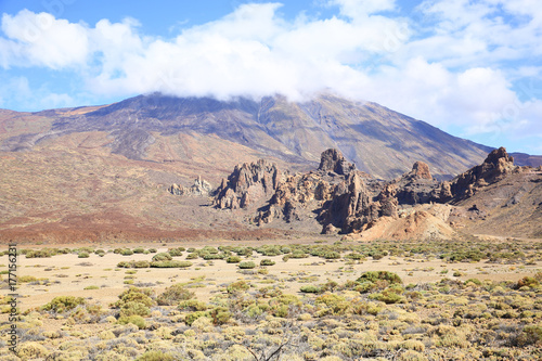 Garden Poster El Teide Volcano on Tenerife Island, Canary Islands, Spain