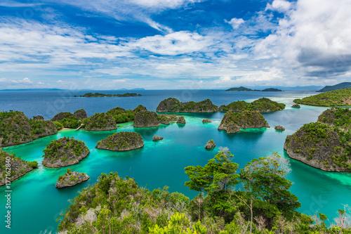 Fotomural  Pianemo Islands, Blue Lagoon with Green Rockes, Raja Ampat, West Papua