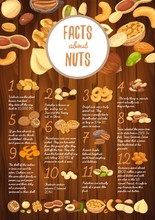 Facts About Nuts On Wooden Boa...