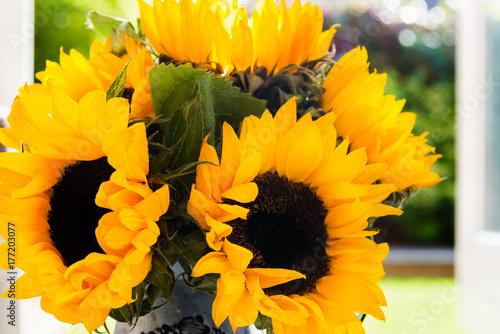 yellow-sunflower-bouquet-in-garden