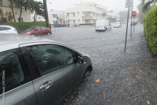 Plakat Miami Flood