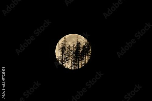 Fototapeta Zbierz Księżyca na północnym rozwidleniu Płaskowyżu