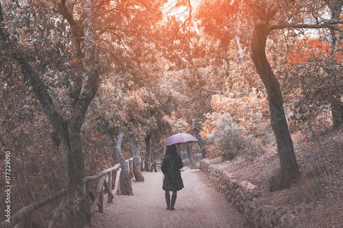 Papiers peints Cappuccino Enjoying autumn rain on a woods path