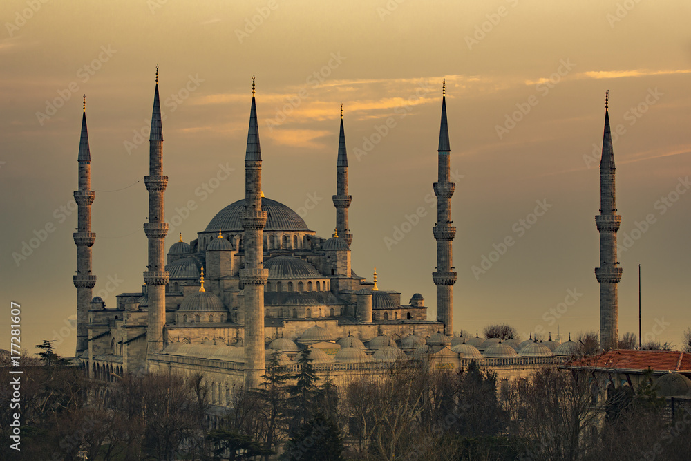 Stampe  The Blue Mosque in Istanbul Turkey