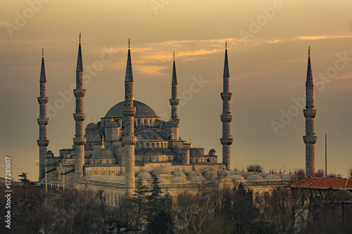 Stampa su Tela  The Blue Mosque in Istanbul Turkey