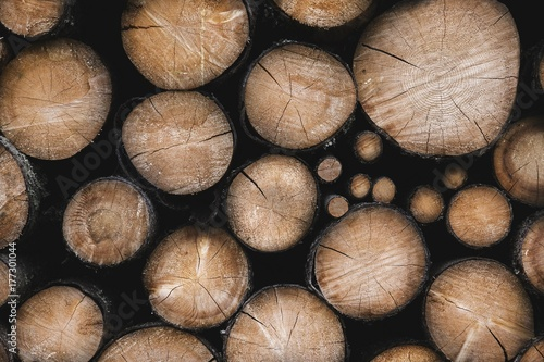 Recess Fitting Firewood texture Pile of chopped fire wood prepared for winter