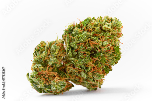 Photo Close up of prescription medical marijuana strain AK47 flower on white backgroun