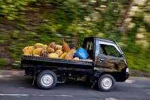 Durians In A Van