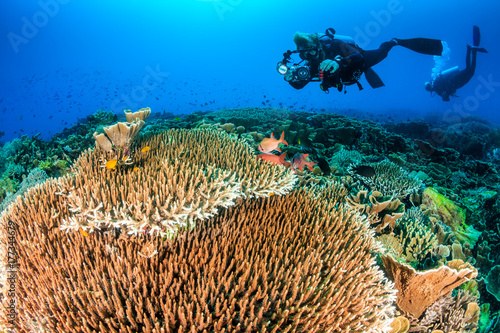 SCUBA diver with a camera swimming over a colorful, healthy, tropical coral reef