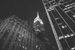 Empire State Building in Manhattan