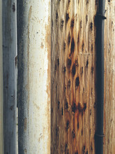 Close Up Of Telephone And Utility Poles