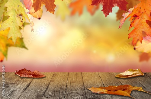 Herbst Hintergrund Buy This Stock Photo And Explore Similar Images
