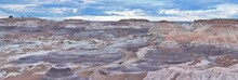 Petrified Forest National Park...