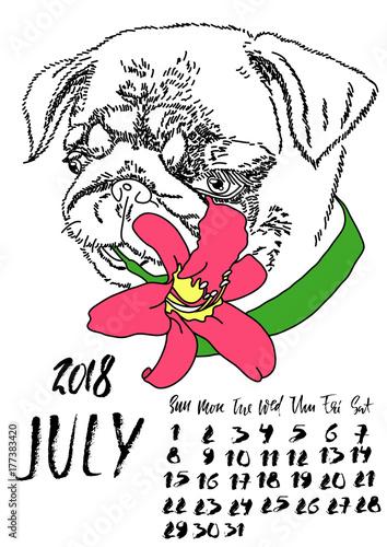 Printed kitchen splashbacks Calendar with dry brush lettering. July 2018. Dog with summer lily flower. Cute pug portrait. Vector illustration.