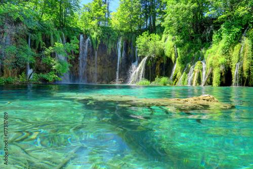 Foto op Plexiglas Groene Waterfall, Pond, and Submerged Log at Croatia's Plitvice Lakes National Park.