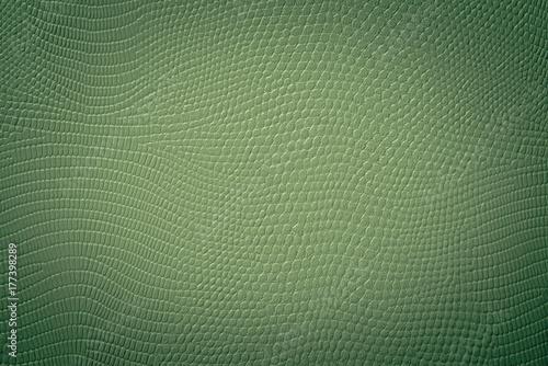 Fotografija  Grüne Textur einer Schlangen Haut Prägung
