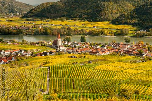 Fototapety, obrazy: Weissenkirchen Wachau Austria in autumn colored leaves and vineyards